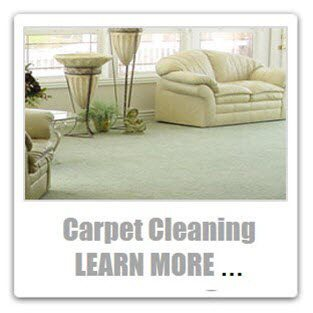professional carpet cleaning stafford va