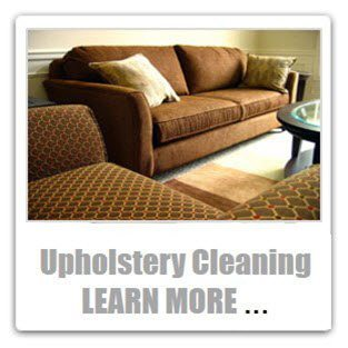 professional upholstery cleaning stafford va